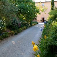 foto Villa Cicolina