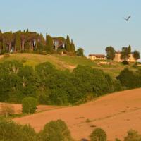foto Azienda Agrituristica Il Sarale