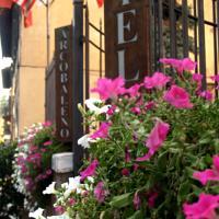 foto Hotel Arcobaleno