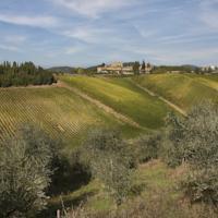 foto MSN Relais Rocca Di Castagnoli