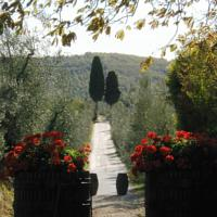 foto Fattoria Casa Sola