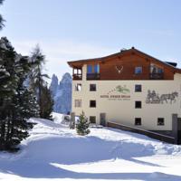 foto Hotel Steger-Dellai