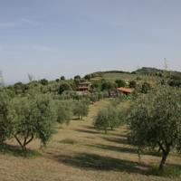 foto The Country House Montali